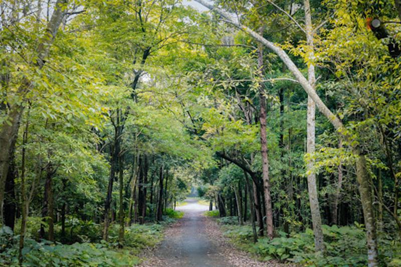 Vườn quốc gia Cúc Phương - Ninh Bình