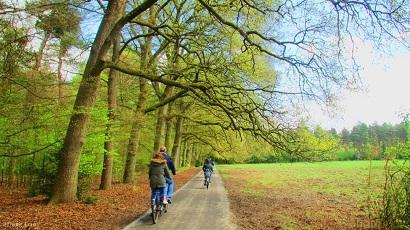 Công viên Park Hoge Veluwe